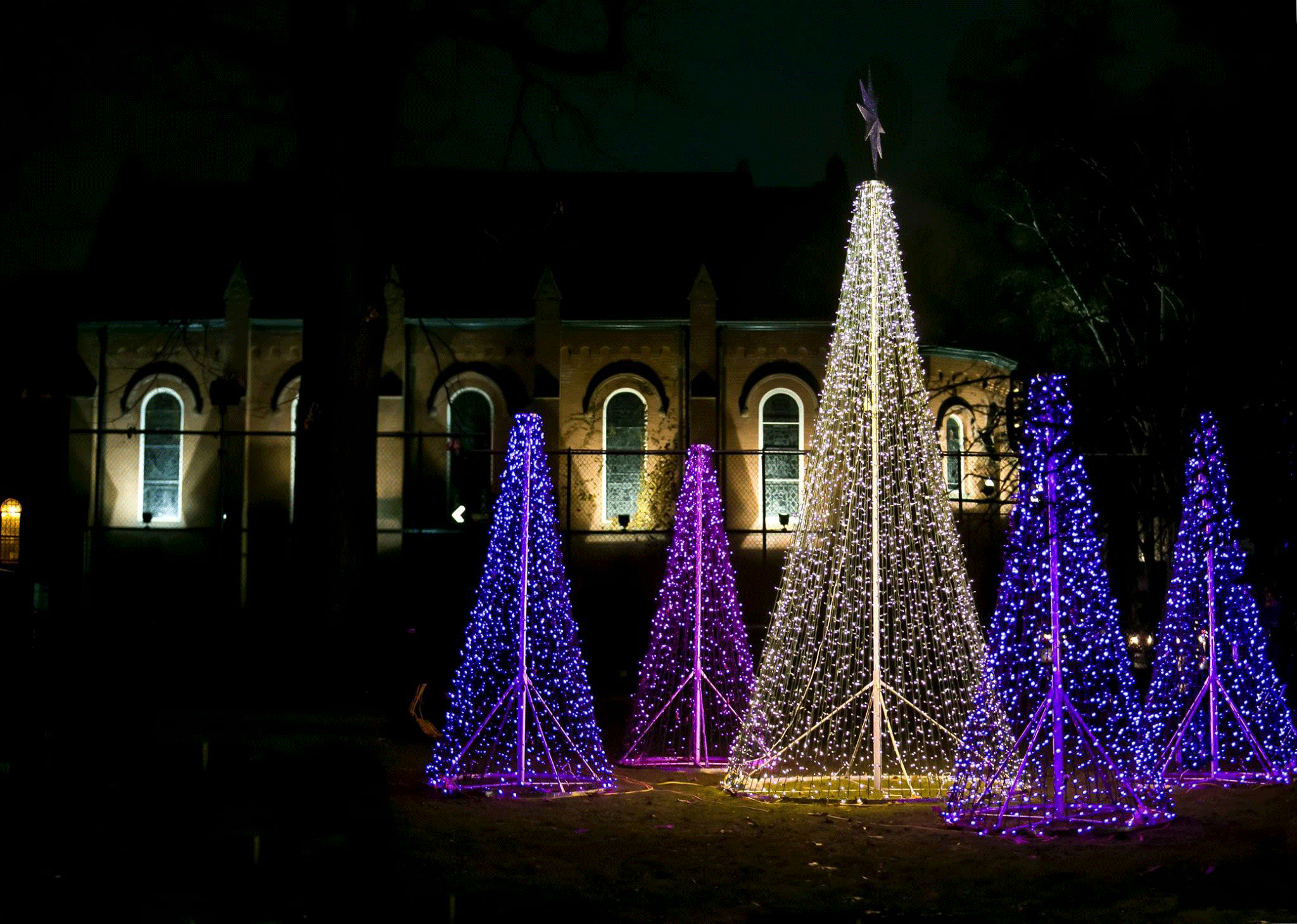 Wycliffe Lights