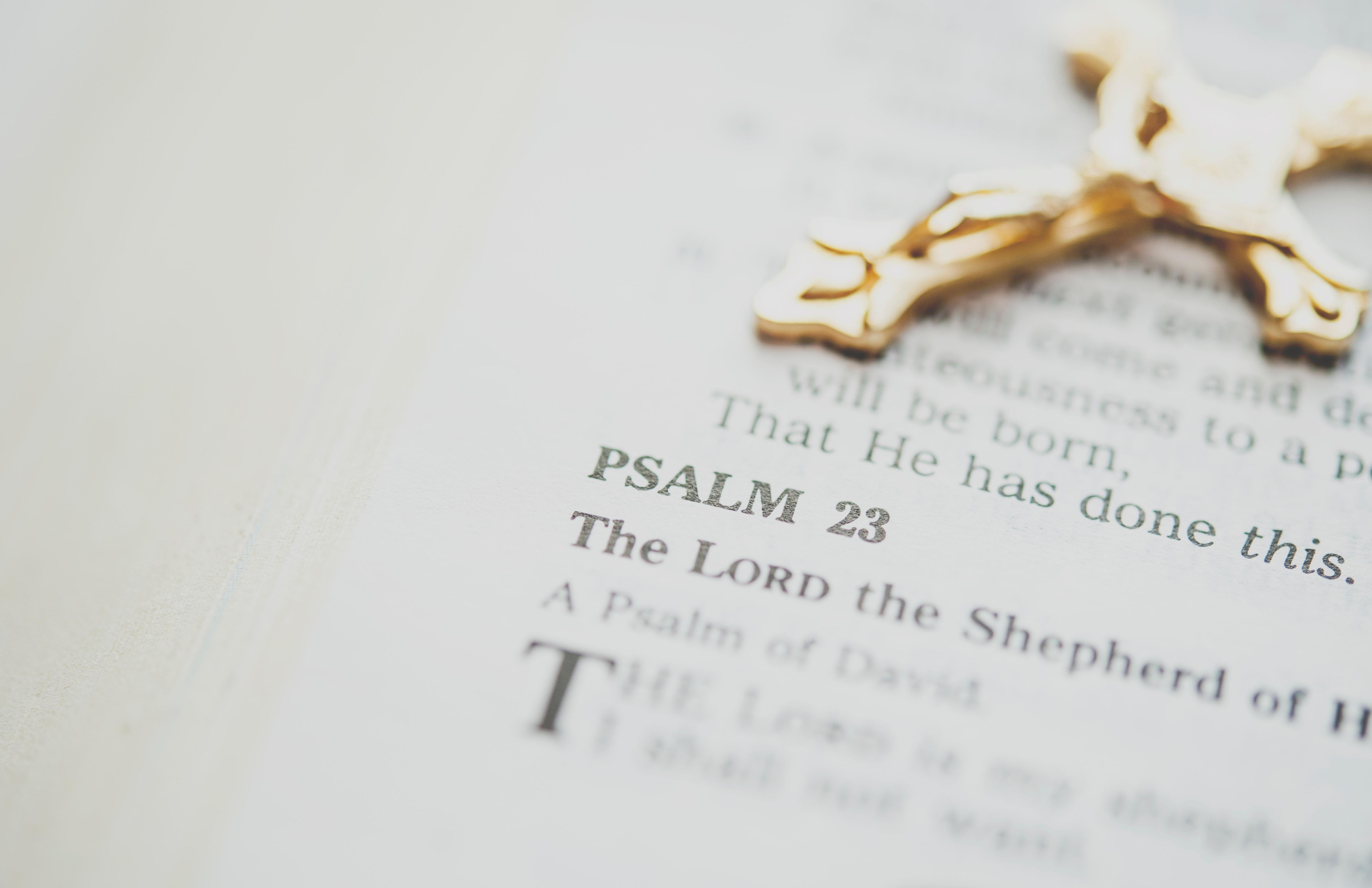 Psalm 23 - Photo by Katherine Hanlon on Unsplash
