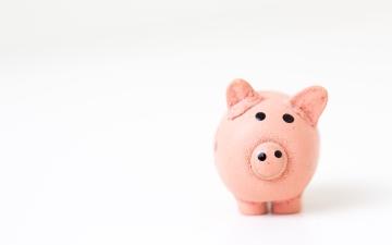 A piggy bank - Photo by Fabian Blank on Unsplash